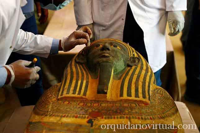 Egypt ทางเจ้าหน้าที่อียิปต์ ได้ประกาศการค้นพบโลงศพโบราณอย่างน้อยกว่า 100 ชิ้นบางส่วนมีมัมมี่อยู่ภายในและรูปปั้นปิดทองอีก 40